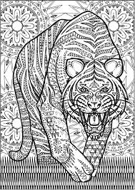 Creative Haven Untamed Designs Colouring Book