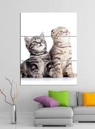 acrylglasbilder 3 teilig 100x120cm katze baby kätzchen tier katzen acrylbild acrylglas acrylbilder wand bild 14e324 wandtattoos und leinwandbilder