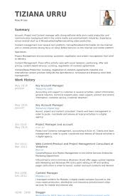 Key Account Manager Resume Example