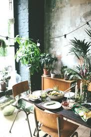 gemütliches esszimmer mit viel grün jungle pflanzen