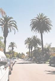 Summer California And Palms Image