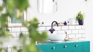 pflanzen fürs badezimmer diese arten fühlen sich pudelwohl