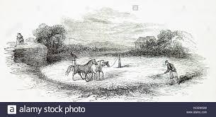Threshing Floor Definition In Spanish by Threshing With Horses Stock Photos U0026 Threshing With Horses Stock