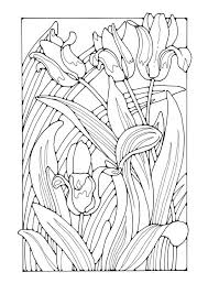 292 Best Flower Coloring Pages Images On Pinterest