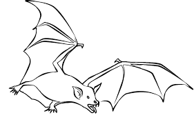 Bat Coloring Pages Printable Free