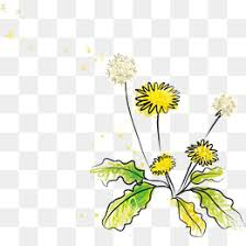 Wildflower Png Vector Material Wildflowers Cartoon Leaf PNG And