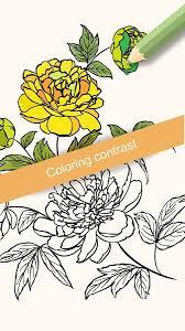 Flowers Coloring Books Screenshot