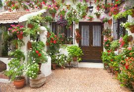 best flower bulbs for mediterranean gardens in cool countries