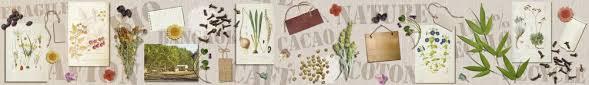 frise murale cuisine herbier frise papier peint sur intissé ou en sticker adhésif