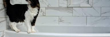 die badezimmer fliesen richtig reinigen