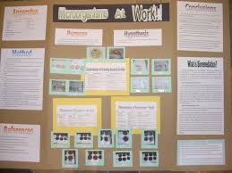 This Is A Picture Of My Science Display Board