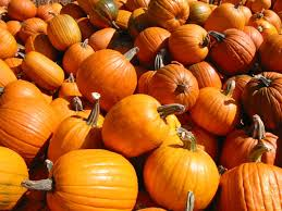 Macdonalds Ranch Pumpkin Patch Scottsdale by Fall Festivals And Halloween Events Surprise Az Mom