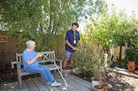100 Www.home And Garden Home And Maintenance Prestige Inhome Care