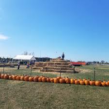 Clayton County Pumpkin Patch by Play St Louis Boone U0027s Crossing Farm Market Pumpkin Patch