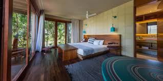 Safari Living Room Decorating Ideas by Rainforest Bedroom Ideas