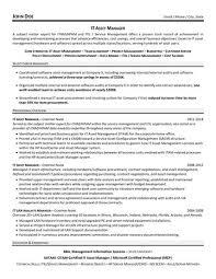 IT Asset Manager Resume Sample