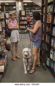 Barnes & Noble Stock s & Barnes & Noble Stock Alamy