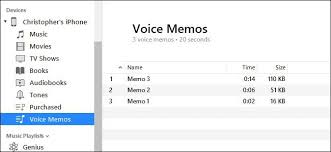 How to Transfer Voice Memos From Your iPhone to Your puter