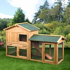 7 Tips For Raising Animals In A Tiny House Insteading