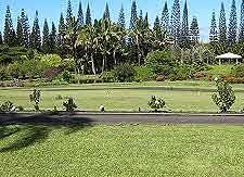 Hawaii Big Island Parks and Gardens Hawaii Big Island USA