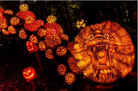 Nh Pumpkin Festival Laconia Nh by Top 7 Jack O Lantern Exhibits You Have To Visit U2014 I Love Halloween