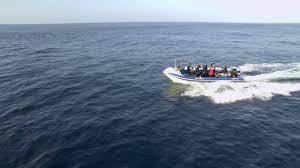 Hms Bounty Sinking Location by Sardine Run 2016 4k Red Epic Youtube