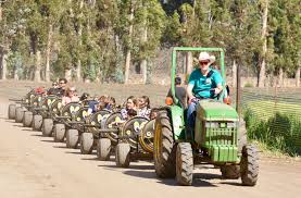 Pumpkin Patch Animal Farm In Moorpark California by Best Activities To Do This Week In Los Angeles U2013 April 10 Cbs