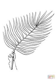 Palm Tree Branch Coloring Page