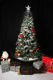 Christmas Tree Amazonca by Snowing Christmas Trees Photo Albums Fabulous Homes Interior