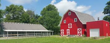 About Red Barn — Red Barn Veterinary Service Red Barn Green Roof Blue Sky Stock Photo Image 58492074 What Color Is This Bay Packers Barn Minnesota Prairie Roots Pfun Tx Long Bigstock With Tin Photos A Stately Mikki Senkarik At Outlook Farm Wedding Maine Boston 1097 Best Old Barns Images On Pinterest Country Barns Photograph The Palouse Or Anywhere Really Tips From Pros Vermont Weddings 37654909