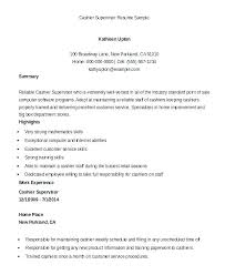 Resume Examples Cashier Experience Objective