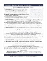 Winning Sales Resume Examples Sample For A Executive Rh Com Verizon Associate Wireless