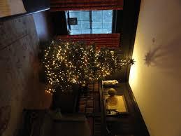 Leyland Cypress Christmas Tree Farm by Cooper U0027s Tree Farm Christmas Starts Here