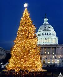 75 Foot Christmas Tree by File 1996 U S Capitol Christmas Tree 31805188425 Jpg