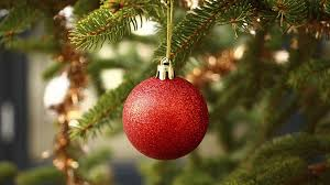 Sugar Or Aspirin For Christmas Tree by Tricks To Make Your Christmas Tree Last Longer