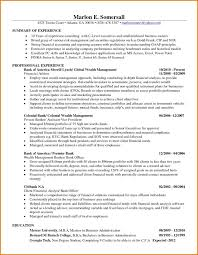 Amazing Business Systems Analyst Resume
