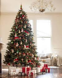 BH Fraser Fir Tree 10