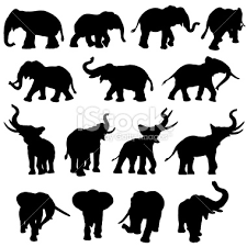 elephant silhouette trunk up Google Search Art