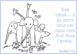 Coloriage De Tout Les Animaux Du Monde Gratuit Bondless