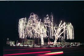 Christmas Tree Lane Modesto Ca by San Jose Christmas Lights Christmas Lights Decoration