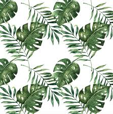 Palm Leaf Wallpaper Self Adhesive Rocky Mountain Decals
