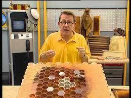 laboratoire de cuisine c est pas sorcier c est pas sorcier le déclin des abeilles