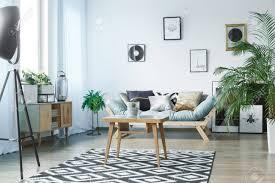 scandi teppich im klassischen wohnzimmer mit pflanzen plakaten und rustikalen holzmöbeln