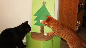Christmas Tree Shop Pembroke Ma by Cat Proofing Christmas Tree Home Decorating Interior Design