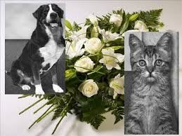 Pet Funeral Home