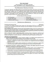 General Counsel Resume Example