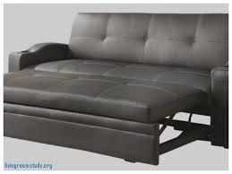 Cb2 Frost Sleeper Sofa by Sleeper Sofa Luxury Sleeper Sofa Cb2 Sleeper Sofa Cb2