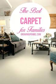 best carpet for family room home gardens concept