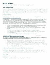 Collection Agent Resume Of Solutions New Real Estate Sample Great Sales
