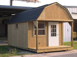 Ideas Beauty Modern Costco Storage Shed With Spectacular